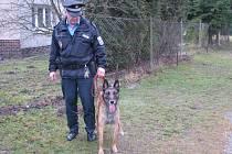 Coja, nová psí posila městské policie, s psovodem Martinem Svobodou.