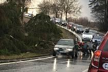 Silný vítr způsobil pád stromu, který zablokoval dopravu nedaleko Radňovic.