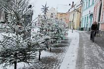 Vánoční atmosféru vykouzlili na Vratislavově náměstí v Novém Městě na Moravě žáci novoměstské první základní školy.