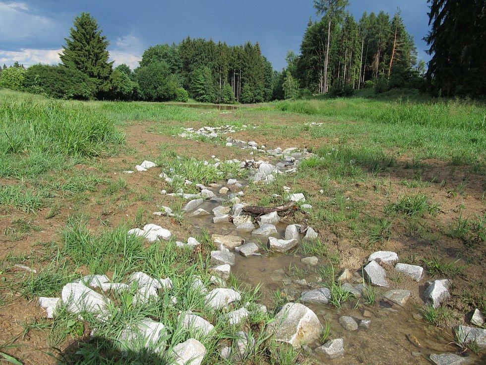 Revitalizace vodního režimu na Lesnovských mokřadech na Jihlavsku.