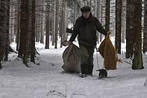 Vzhledem k napadanému sněhu myslivci nyní chodí do lesa pravidelně nejen s léky, ale i s krmením. Na snímku z konce ledna je při každodenní obchůzce krmelců zachycen Lubomír Vyhlídal z Mrákotína na Jihlavsku.