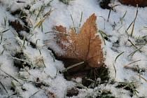 Sněhové vločky se snesly na krajinu. Nebudou tu ale dlouho, meteorologové už hlásí oteplení.
