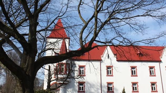 Dům pro seniory Mitrov je umístěn v budově někdejšího zámku.