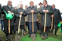 Dubovou alej na břehu Veselského rybníka, kterou Miloš Zeman pojmenoval po zavražděném studentu Petru Vejvodovi, zasadil loni na podzim prezident s hejtmany.