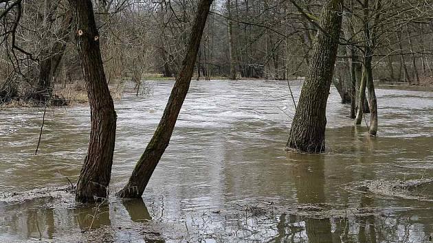 Prvního povodňového stupně dosáhal na krátkou dobu v noci z pátku na soboru řeka Svratka v Dalečíně.