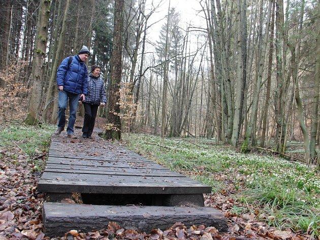 Bledule u Chlébského už lákají turisty.