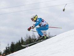 Veřejný závod v alpských disciplínách uspořádal Ski klub Velké Meziříčí na místním Fajtově kopci. Soutěž neohrozilo ani na začátek března již poměrně dost teplé počasí.