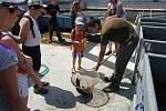 Netínské děti mají každou středu o zábavu postaráno.