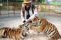 Principál Jaromír Joo s tygřaty Fredem a Valentýnou