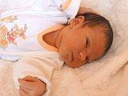 KAROLÍNKA LYSOVOLYK se narodila 7. května 2018 ve 22.46 hodin s délkou  52 cm a váhou 3 580 g. Na prvorozenou holčičku se dopředu těšili rodiče Jevgenij a Natalia z Milovic.