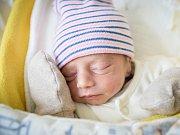 PETR BIKAR se narodil na počátku prosince 2018 v 7.45 hodin s délkou 44 cm a váhou 2 370g. Rodiče Pavlína a Petr chlapečka předem očekávali a doma v Nymburce se na něho těší jeho tři sestřičky.
