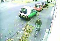 Lupič prchající na kole od závor na Drahelice k místničce