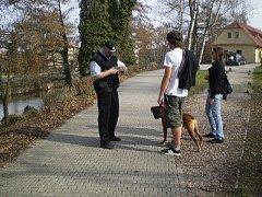Strážníci v Nymburce pokutují neukázněné pejskaře