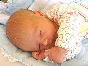 DAVID VANĚK se narodil 7. března 2018 v 17.05 hodin.Měřil 45 cm a vážil 2 890 g. Z prvního chlapečka se radují rodiče Michal a Magdaléna z Plaňan, kde se na brášku těší také dvě sestřičky: osmiletá Veronika a pětiletá Terezka.