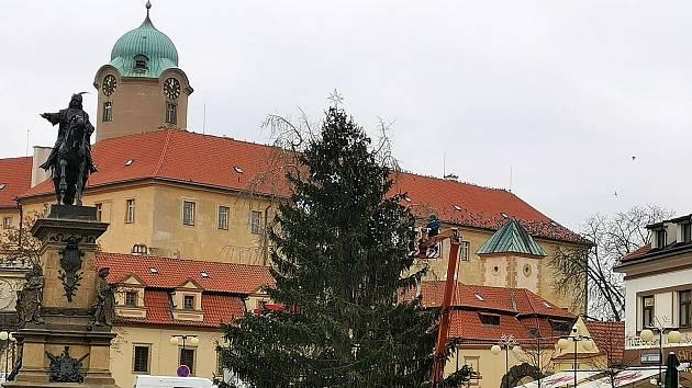 Smrk ztepilý ozáří Jiřího náměstí.