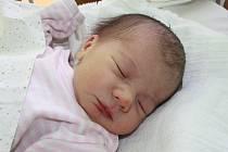 NIKOLA JE PRVNÍ V RODINĚ. Nikola Krčilová se narodila do rodiny Štěpánky a Kamila z Malého Vestce 8. března 2014 ve 23.05 hodin. Vážila 2 660 g a měřila 44 cm. Rodiče o holčičce dopředu věděli.
