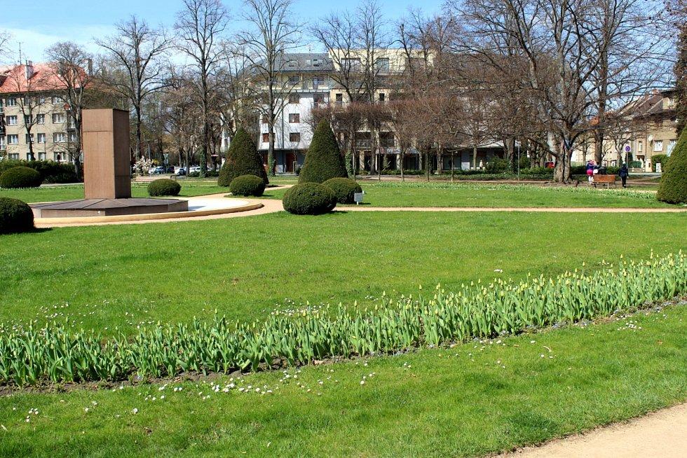 Ve spodní části lázeňského parku v Poděbradech panuje jaro.