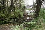 Spadlé stromy na přítoku Labe u sídla poříční policie