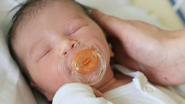 Kristýnka Kohoutová se narodila 2. června. Vážila 3270 gramů a měřila 51 centimetrů. Domů do Milovic si ji k sourozencům Lucince a Jakubovi odvezli maminka Petra a tatínek Zdeněk.