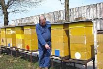 Poděbradský včelař Josef Lounek potvrzuje, že mírné zimy ubližují včelstvům.