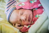 Ester Surmaiová, NymburkNarodila se 17. června 2019 v 8.02 hodin, vážila 2 880g a měřila 46 cm. Na holčičku se těšili rodiče Libuše a Patrik a sourozenci Libor (2 roky) a Patrik (1 rok).