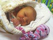 KLÁRA BEDNÁŘOVÁ se narodila 27. 12. 2017 ve 12.11 hodin s výškou 48 cm a váhou 3 380 g rodičům Petrovi a Petře a sestřičce Zuzance (3) z Milovic.