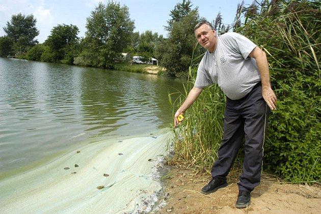 Hasiči včera vyjížděli k jezeru do Sadské. Místo chemické látky nalezli nebezpečné sinice.