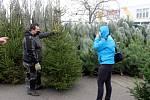 Před některými obchodními řetězci už byl spuštěn prodej vánočních stromků.