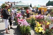 Výstaviště v Lysé nad Labem otevře brány pro dvojici výstav Květy a Festival věštění už ve čtvrtek 13. července.