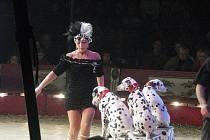 Cirkus Jo-Joo exceloval v Poděbradech
