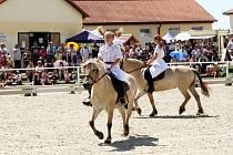 Koně pro Kapku naděje