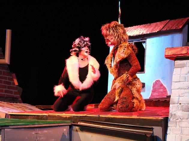 Kočičí pohádka měla premiéru v sobotu v Hálkově divadle.