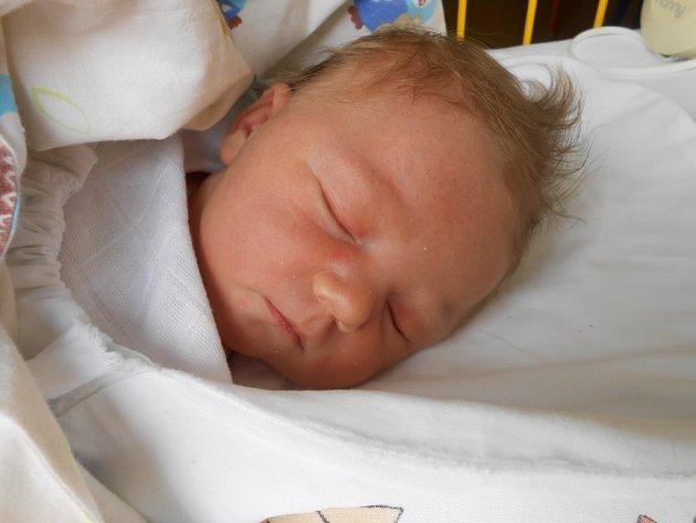 EMMA Z MĚSTCE KRÁLOVÉ. EMMA ŠACHOVÁ se narodila 16. dubna 2017. Z holčičky, která vážila 3 96o g a měřila 53 cm, se radují maminka Eliška  a tatínek Jan.