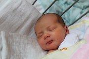 PŘEKVÁPKO KLÁRKA. KLÁRA VOLFOVÁ je holčička narozená 11. dubna 2017 v 12.29 hodin mamince Lence a tátovi Mirkovi z  Patřína. Na miminko s mírami 3 370 g a 48 cm tu už čekala tříletá sestřička Rozárka. Být to kluk, měla by Rozárka brášku  Dalimila.