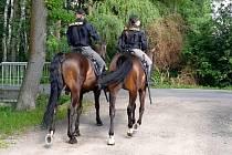 Z preventivní akce policie v chatové oblasti Kersko.
