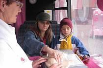 Růžový autobus proti rakovině prsu přistál na nymburském náměstí.