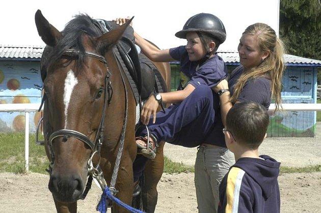 Tábor s koňmi na poděbradské jízdárně.