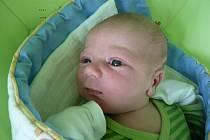 VÍTEK JE DRUHÝ V RODINĚ. Vítek Nevšímal se narodil 31. října 2014 mamince Petře a tátovi Vaškovi z Nymburka. Po narození vážil 3 910 g a měřil 50 cm. Doma se na svého nového brášku těšil  Honzík.
