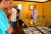 Originální výstava brouků je k vidění v čelákovickém muzeu.