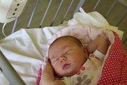 BENJAMÍNEK ADRI. ADRIANA KUPČÍKOVÁ se narodila 4. července 2017 v 14.34 hodin s mírami 3 320 g a 48 cm. Rodiče Michaela a Tomáš z Nového nadělili malou sestřičku svým dvěma synkům, Pavlovi (4) a Františkovi (2).  A jméno jí vybral tatínek.