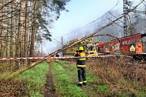 Odstranění stromu spadlého na trakční vedení nad kolejemi nedaleko nymburské železniční stanice.