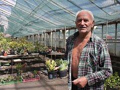 Jaroslav Bittmann je kouzelníkem mezi zahradníky. V jeho zahradnictví užasnete, co všechno lze s rostlinami udělat.