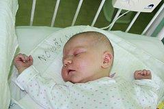 MÍŠA JE PO MÁMĚ. Michaela VAŇHALOVÁ přišla na svět uprostřed léta 29. července 2015 ve 14.44 hodin. Vážila 3 460 g a měřila 49 cm. Je zatím prvním miminkem rodičů Míši a Marka z Tatců. Když to bude příště kluk, bude se jmenovat Marek. Tentokrát po tátovi.