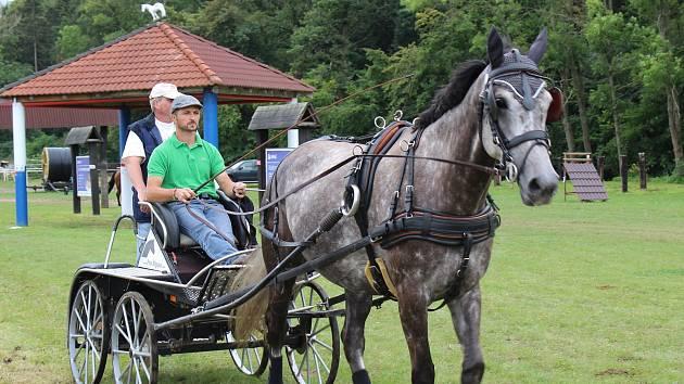 Už po osmnácté se konalo na kolbišti Pod Hůrou Semické derby koňských spřežení.