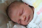 JAN FREY se narodil 31. října 2018 v 13.22 hodin s délkou 47 cm a váhou 3 460g. Michaela a Jiří z Kovanic se na prvorozeného chlapečka předem těšili.