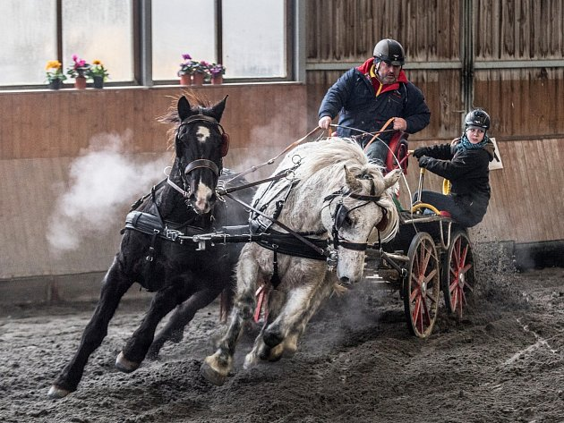 Zimní jezdecký pohár vHradištku 2018, Petr Vlašic