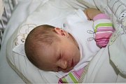PRINCEZNA NATÁLKA. Natálie HORKÁ bude slavit narozeniny 16. září. Počítat je bude od roku 2015,  to se prvně rozhlédla po světě ve 4.19. Její míry byly 3 220 g a 49 cm.   Je zatím prvním miminkem rodičů Michaly a Honzy z Hořan.