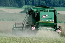 Už i na Nymbursku vyzkouší geneticky upravené osivo