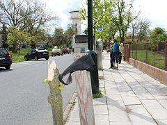 Čtyři vzrostlé stromky poničili neznámí vandalové v Havlíčkově ulici v Nymburce.
