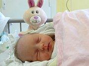 ADÉLKA CHRPOVÁ se narodila 28.12.  2017  ve 14.36 s výškou 45 cm a váhou 2 930 g. S rodiči Vladislavem a Ivanou a dvěma sourozenci je z Poděbrad.